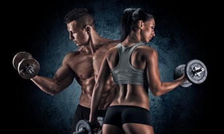 Übersicht: Muskelaufbauende und abbauende Hormone