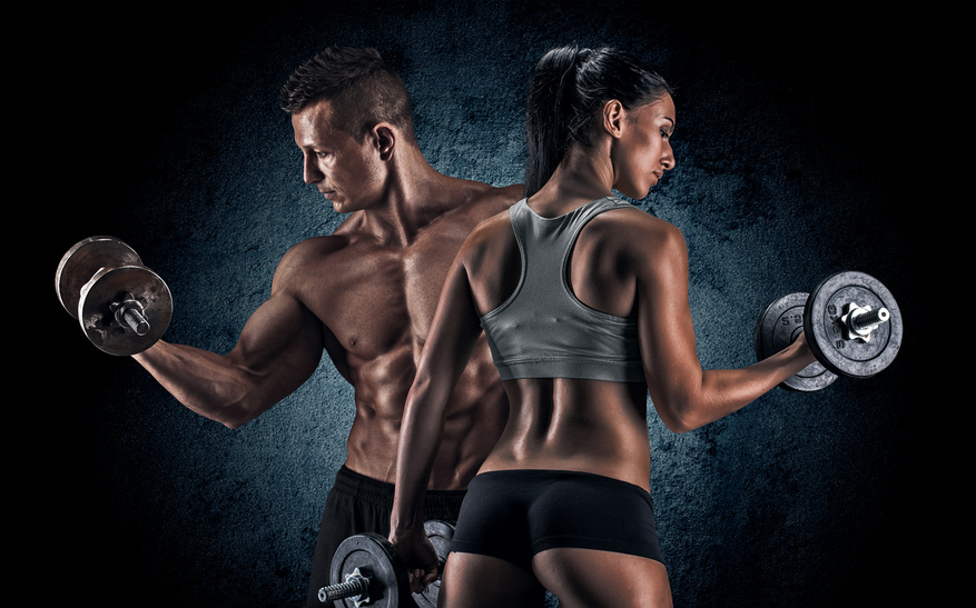 Muskelaufbauende und abbauende Hormone